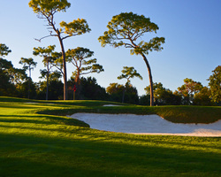 Tampa St Petersburg-Golf outing-Innisbrook - Copperhead-Daily Rate