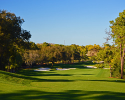 Tampa St Petersburg-Golf vacation-Innisbrook - Copperhead-Daily Rate