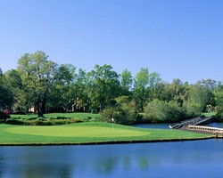 Myrtle Beach-Golf expedition-Willbrook Plantation