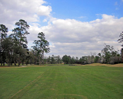 Fort Lauderdale-Golf expedition-Woodlands - East